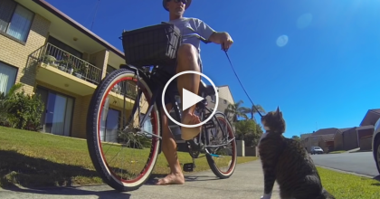 He Takes A Ride On His Bike, But Guess Who Gets To Come Along? This Is Amazing.