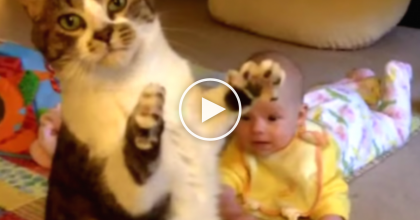 This Baby Loves His Kitty And It Doesn't Get Much Cuter Than This.