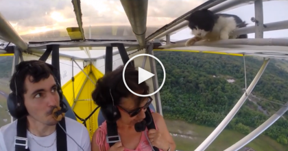 He Was Flying His Airplane When All Of A Sudden He Got The Surprise Of A Lifetime!