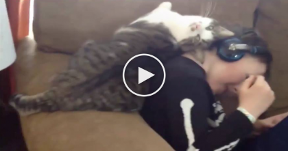 His Owner Puts On Headphones, But This Cuddly Cat Wants Attention Right MEOW…Aww!!