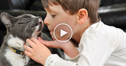 This Boy And His Cat Are Best Friends, But The Reason Why?… Now I'm In Tears.