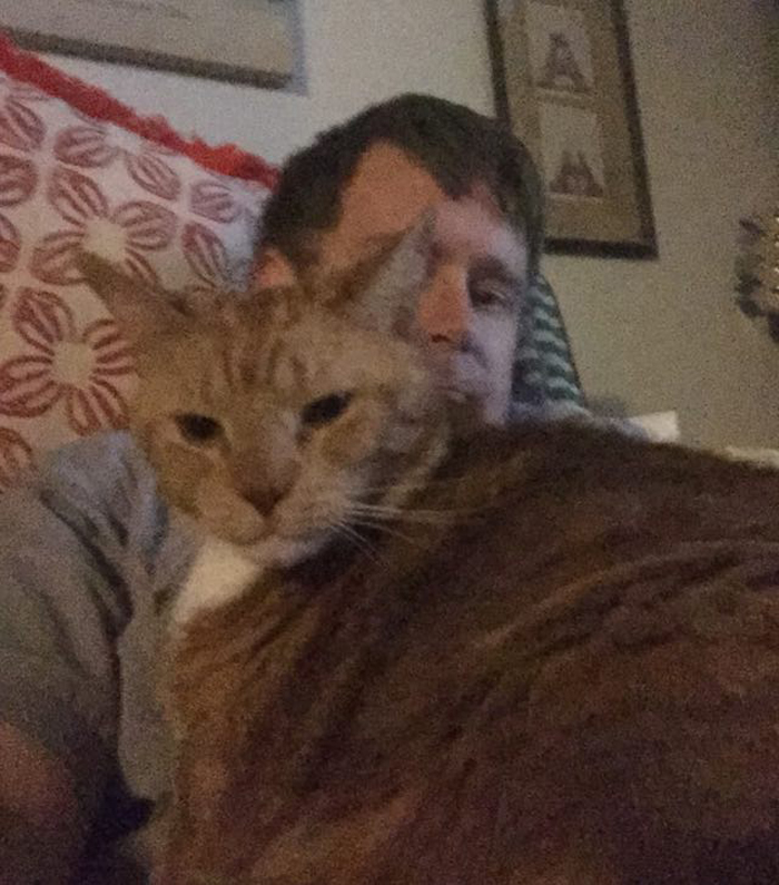 cat_and_daddy