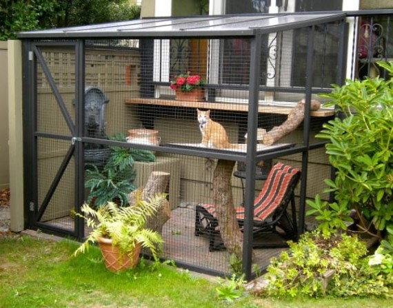 catio-cat-patio-1