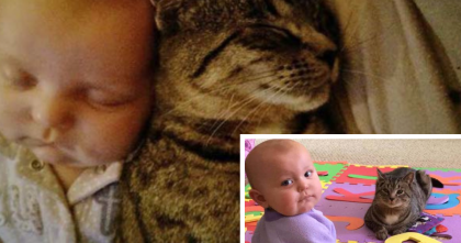 This baby's best friend is cutest kitty and seeing them together is just adorable!