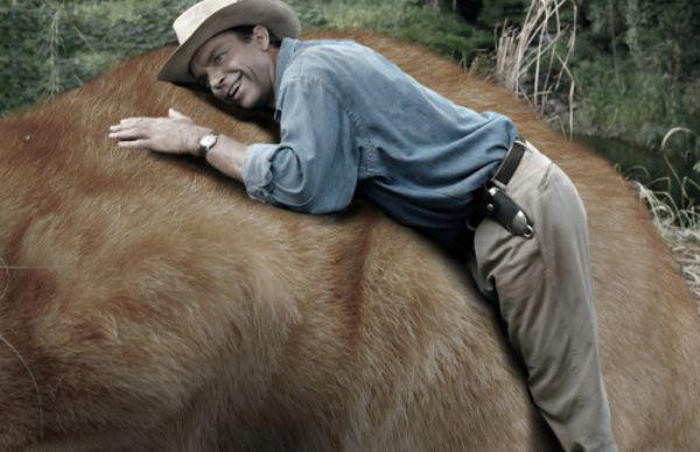 man_hugs_huge_cat