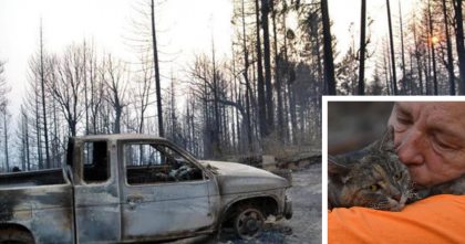 Wildfire Destroyed Their Home, But When They Came Back, They Couldn't Believe It… AMAZING.