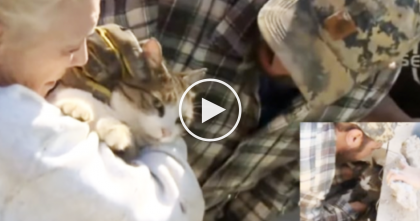 She Couldn't Find Her Cat Anywhere, But Then She Heard Something…I Can't Believe This!