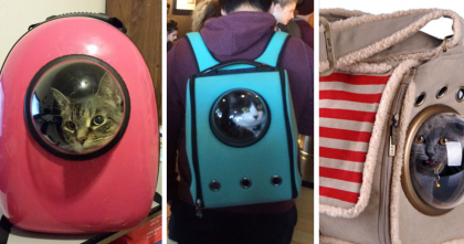 This New Cat Carrier Turns Your Cat Into A Little Astronaut…You've Gotta See THIS.