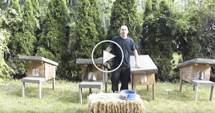This Man Invents A New Way To Help Stray Feral Cats…And It's Completely Genius!!