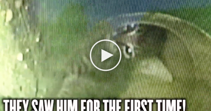 Unbelievable Video: Rescuers Spend 33 Hours To Save Kitten Trapped In Storm Drain… WATCH.