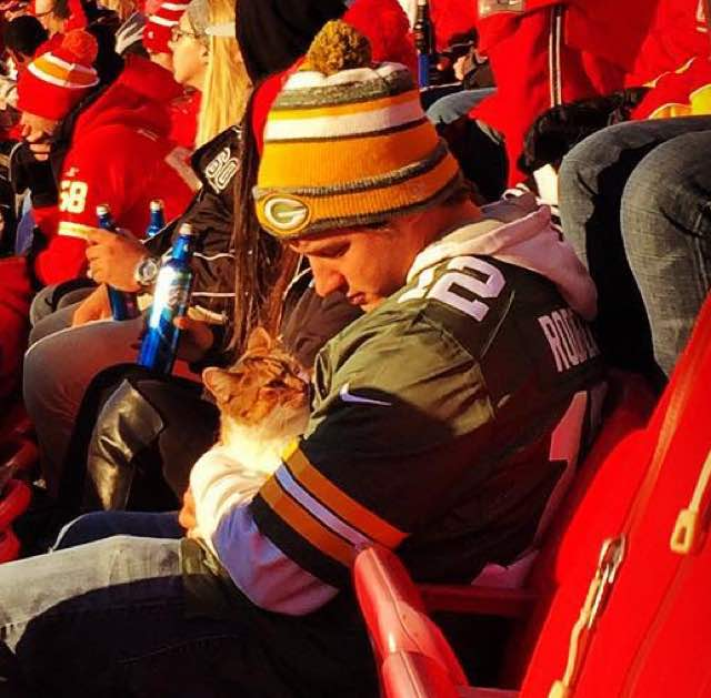 2-cat-rescued-at-nfl-game