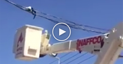 "Fearless Cat Finds Himself Stuck In The Most Scary Place Ever…But ""Meows"" For Heroic Rescue!"