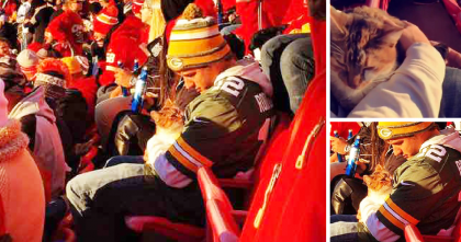 Cat Nearly Jumps Off Balcony At NFL Game, But Then Kind Human Notices, Rescues & Adopts!