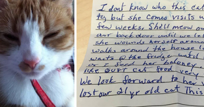 Her Cat Went Outside To Play, But When Kitty Came Back home, This Note Was Attached To Her…