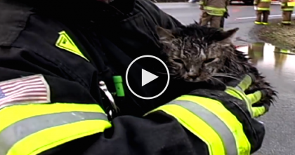 91 Year Old Women Does The Unthinkable For Her Cat When Massive Tornado Hits… Unbelievable.