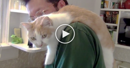 He Does The Dishes, But Look What's On His Shoulder… Do You See It?  It's The SWEETEST.
