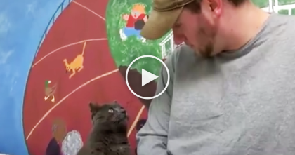 He Lost His Best Friend Cat, But Then 4 Years Later You Won't Believe What Happened, Amazing!
