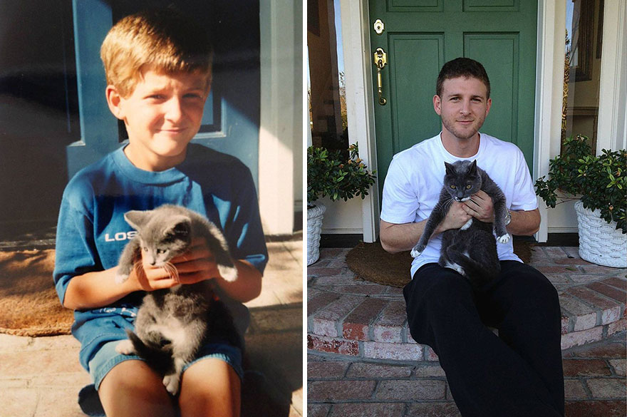 10-before-and-after-growing-up-cats