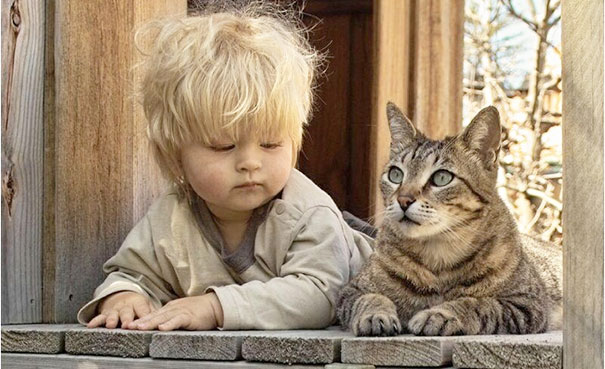 8-Kids-Need-A-Cat