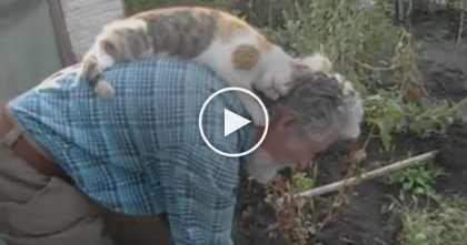 He's Doing Some Garden Work, But See What Kitty Is Doing… This Is Just TOO Cute!!