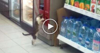 They Walked Into This Store, But Watch What They Saw At The Coffee Machine, LOL!!