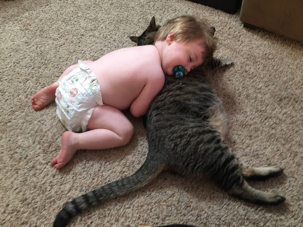cat sleeping with baby