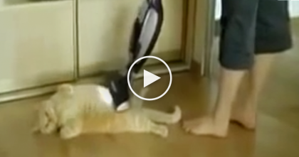 She Turns On The Vacuum, But What Happens next?  NOBODY Expected To See This, It's Hilarious!!