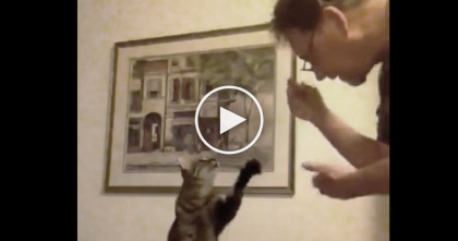 He Starts Making Hand Motions To His Cat, But When You See Why… This Is Just AMAZING.