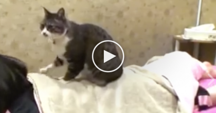 She Went To Get A Massage, But Watch What She Gets Next… This is The Best Thing EVER.