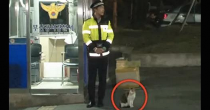 Cat Goes To Police Asking For Help, But You Won't Believe The Surprise They Got Next…