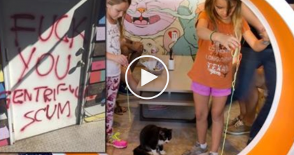 "Horrible Racist Protestors TERRORIZE Cat Sanctuary In Austin Texas… ""It's Just Sickening"""