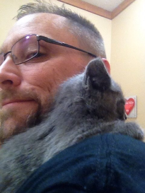 kitten-was-hit-by-a-car-but-this-man-was-the-only-one-who-cared-to-help-this-story-is-wonderful-5