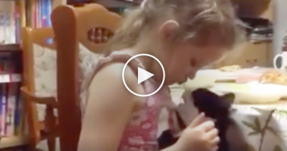 Cat Notices Kid Eating Spaghetti, But The Next Thing You See Is HILARIOUS… Just Watch, LOL!