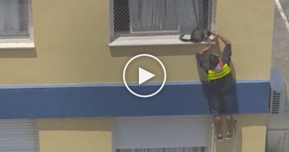Delivery Guy Noticed Kitten Trapped On Ledge, But Then Risks His Life… Keep Watching Till The End!
