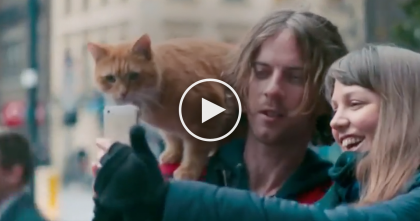 Drug Addict Meets A Stray Cat, But Years Later When You See Them… Most AMAZING Story Ever!