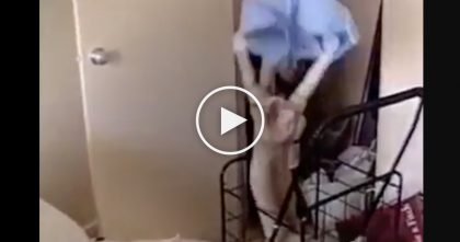 She Throws Some Clothes Towards The Hamper, But Watch How The Cat Reacts To It.. LOL, Hilarious!