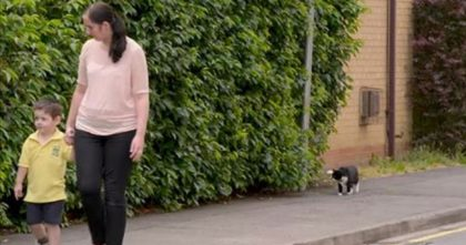 Little Boy Was Scared About Going To School, But When The Cat Noticed… Watch His Reaction!