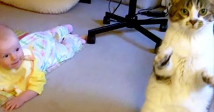 Her Mom Put The Baby On The Carpet, But Watch How The Cat Reacts… This Is SOO CUTE!!