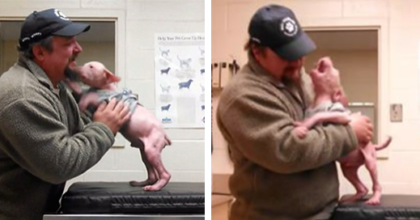 Pup's reaction when man returns to adopt this rescued dog is the happiest thing on earth