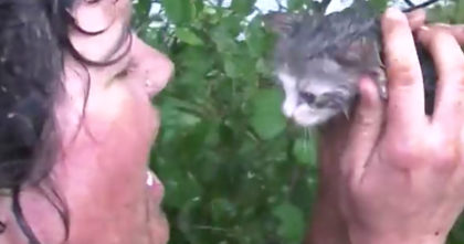 Drowning kitten crying out for people to help… Now watch when her request is answered!