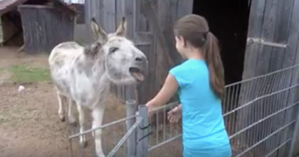 She walks up to this donkey to say 'hello' but now listen the donkey's reaction… I wasn't prepared for THIS.