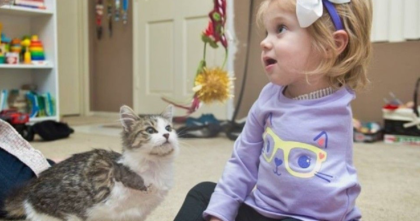 Three-legged kitten meets one-armed disabled girl, and then THIS happened… This is BEAUTIFUL!!