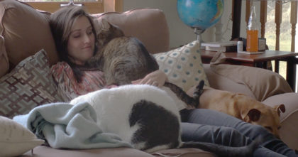 She got pregnant, but when you take a closer look at how the cats are reacting… This is BEAUTIFUL!