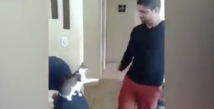 Guy walks through house, then kitty puts his paw out and does the cutest thing when he notices him…