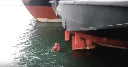 Cat Desperately Crying For Someone To Save Him, Clinging To Boat – Now Watch When Man Dives In