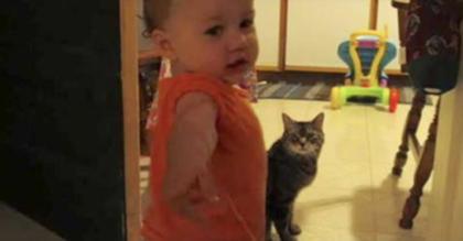Dad records what happens every morning between his daughter and cat—and It's just too adorable